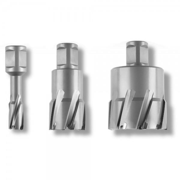 "Fein Fresa corona HM Ultra 35, D.20 mm, con attacco 3/4"" Weldon"